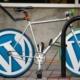 wordpress, wordpress logo, icon-973439.jpg