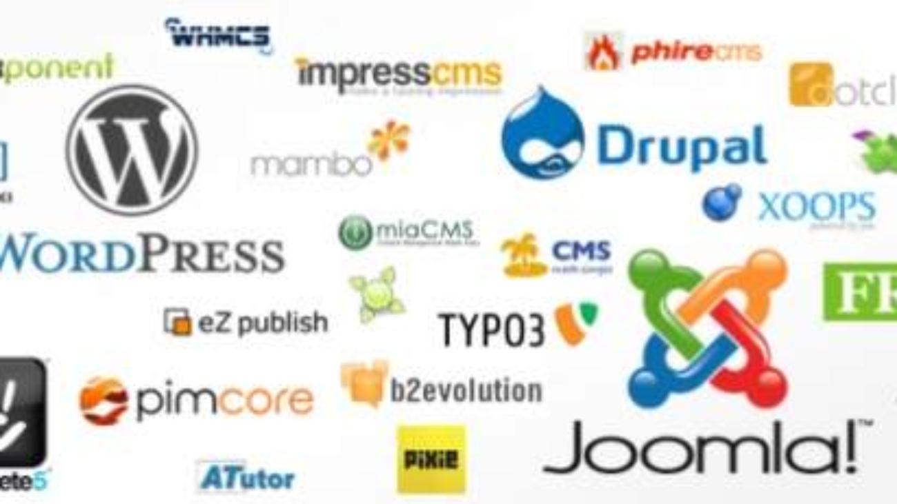 services-de-developpement-cms-personnalises-avec-des-fonctionnalites-etonnantes